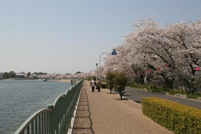 2.jpg歩道